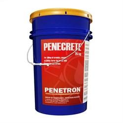 Смесь для гидроизоляции швов Пенетрон Пенекрит (Penetron Penecrete) 25кг - фото 5380